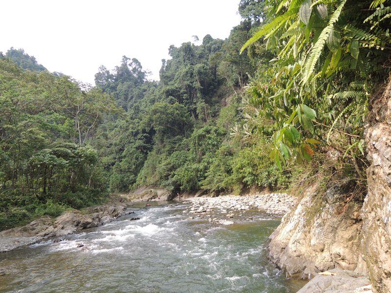 Bohorok river - Bukit Lawang