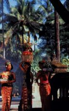 balihyat - Bali Hotels