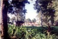 kerinci emplacement helder house - The Kerinci National Park